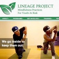 lineage-project-web